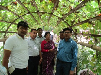 Organic plant visit by 20 district NGO