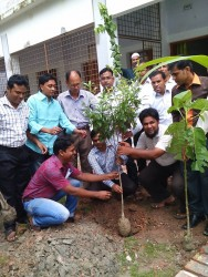 Plantation for Educational Institute