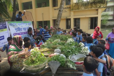 Uncultivated Plant campaign on School